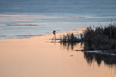 在湖的温暖的春天颜色作为冰融解的为时 免版税库存照片