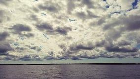 在湖的生活 免版税图库摄影