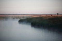 在湖的神秘的有薄雾的早晨 免版税库存图片