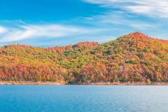 在湖的秋天季节有小山岸的美丽的森林的 库存图片