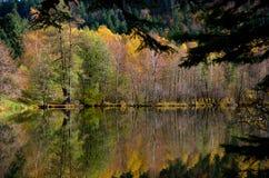 在湖的秋天颜色 库存照片