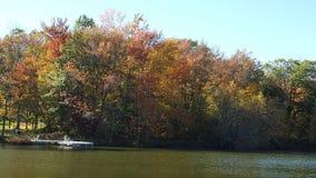 在湖的秋天 库存照片