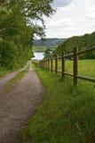 在湖的篱芭 库存照片