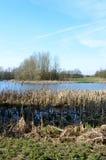 在湖的美丽如画的看法在一个晴天 库存图片
