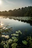 在湖的美好的日出 免版税图库摄影