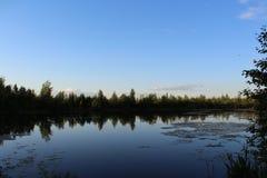 在湖的美好的自然 库存照片