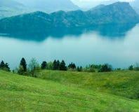 在湖的花田有山背景 库存照片