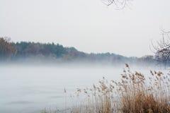 在湖的薄雾 免版税库存图片