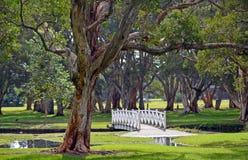 在湖的被成拱形的白色桥梁parkland的 免版税库存照片