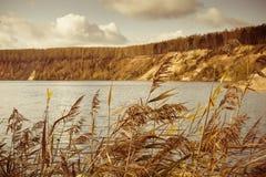 在湖的视图 免版税库存图片