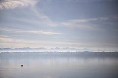 在湖的醇厚的vibe 免版税图库摄影