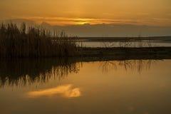 在湖的金黄小时 免版税库存图片