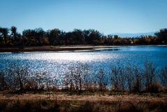 在湖的阳光 库存照片