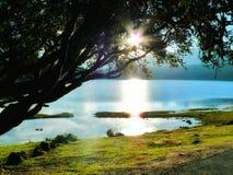 在湖的阳光 免版税库存图片