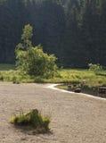 在湖的阳光 库存图片