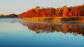 在湖的雾清早