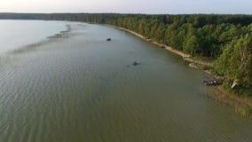 在湖的飞行在森林附近 影视素材
