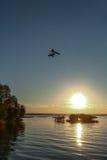 在湖的飞行 免版税图库摄影