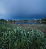 在湖的绿草 免版税库存图片