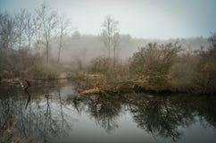 在湖皮尔斯的一个有雾的冬天早晨 免版税库存照片