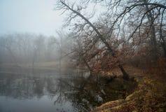 在湖皮尔斯的一有雾的天 免版税图库摄影