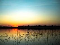 在湖背景的日落 免版税图库摄影