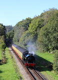 在湖边和Haverthwaite铁路的蒸汽火车 免版税库存照片