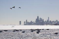 在湖边平地的芝加哥地平线在一个零度以下的冬日 免版税库存图片