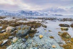 在湖边的日落与海湾的岩石在低潮期间的 免版税图库摄影