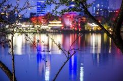 在湖边的春天夜 免版税图库摄影