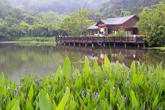 在湖边的木茶馆 免版税库存照片