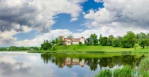 在湖银行在利沃夫州地区,乌克兰的Svirzh城堡 免版税图库摄影