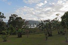 在湖阿雷纳尔上的风景La的福尔图纳,哥斯达黎加 免版税库存图片