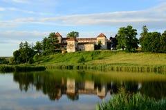 在湖附近的古老城堡Svirzh 乌克兰 库存图片