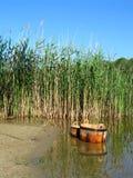 在湖附近的夏天idyl 库存照片