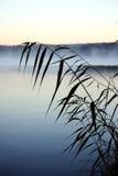 在湖附近的工厂有雾的 免版税库存图片
