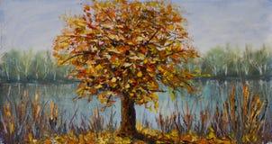 在湖附近的树,秋天黄色叶子,树的反射在水中反对天空 免版税图库摄影