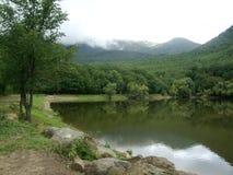 在湖附近的森林有山的 免版税库存图片