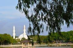在湖附近的清真寺 免版税库存照片