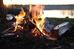 在湖附近的营火 图库摄影