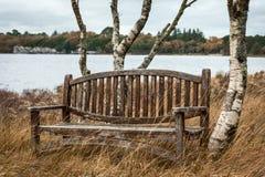 在湖附近的长凳 免版税库存图片