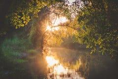 在湖马丁的日落 免版税图库摄影