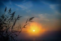 在湖,俄罗斯,乌拉尔的有薄雾的日出 图库摄影