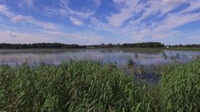 在湖,拉脱维亚附近的土气小船在夏天 影视素材