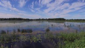 在湖,拉脱维亚附近的土气小船在夏天 股票录像