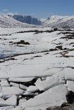 在湖,风景的浮冰在挪威 免版税库存图片