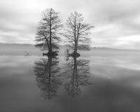 在湖33的雾黑白的 库存照片
