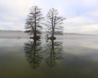 在湖33的雾 免版税库存照片