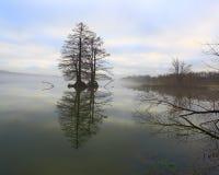 在湖33的雾 库存图片