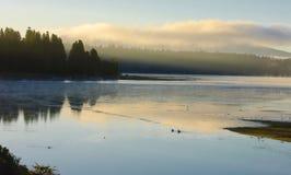 在湖Almanor的有薄雾的早晨 免版税库存图片